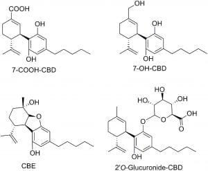7-oh-cbd molecular structures