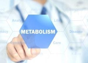 doctor pointing metabolism