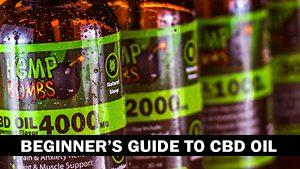 Beginner's Guide to CBD Oil