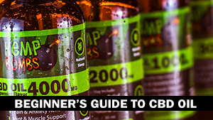 Beginner's Guide to CBD Oil