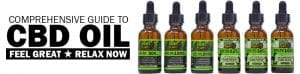 comprehensive guide to cbd oil banner, various hemp bombs cbd oil tinctures