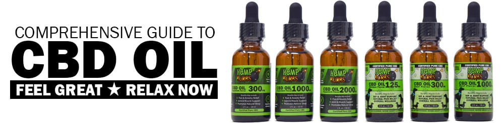What is CBD Oil? A Comprehensive Guide