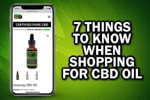 smart phone with hemp bombs website 7 things to know when shopping for cbd oil