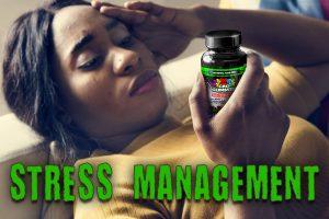 Hemp Bombs CBD as a Chronic Stress Management Tactic