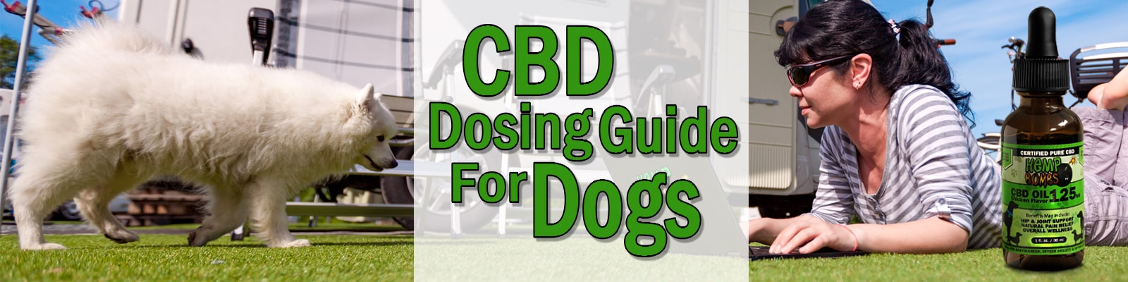 How Much CBD Oil Should I Give My Dog Based on Weight