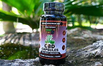 High Potency CBD Capsule Pills