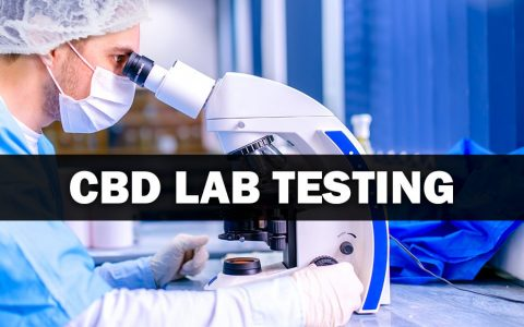 The Importance of CBD Lab Testing Reports