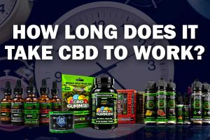 How long for CBD oil to work
