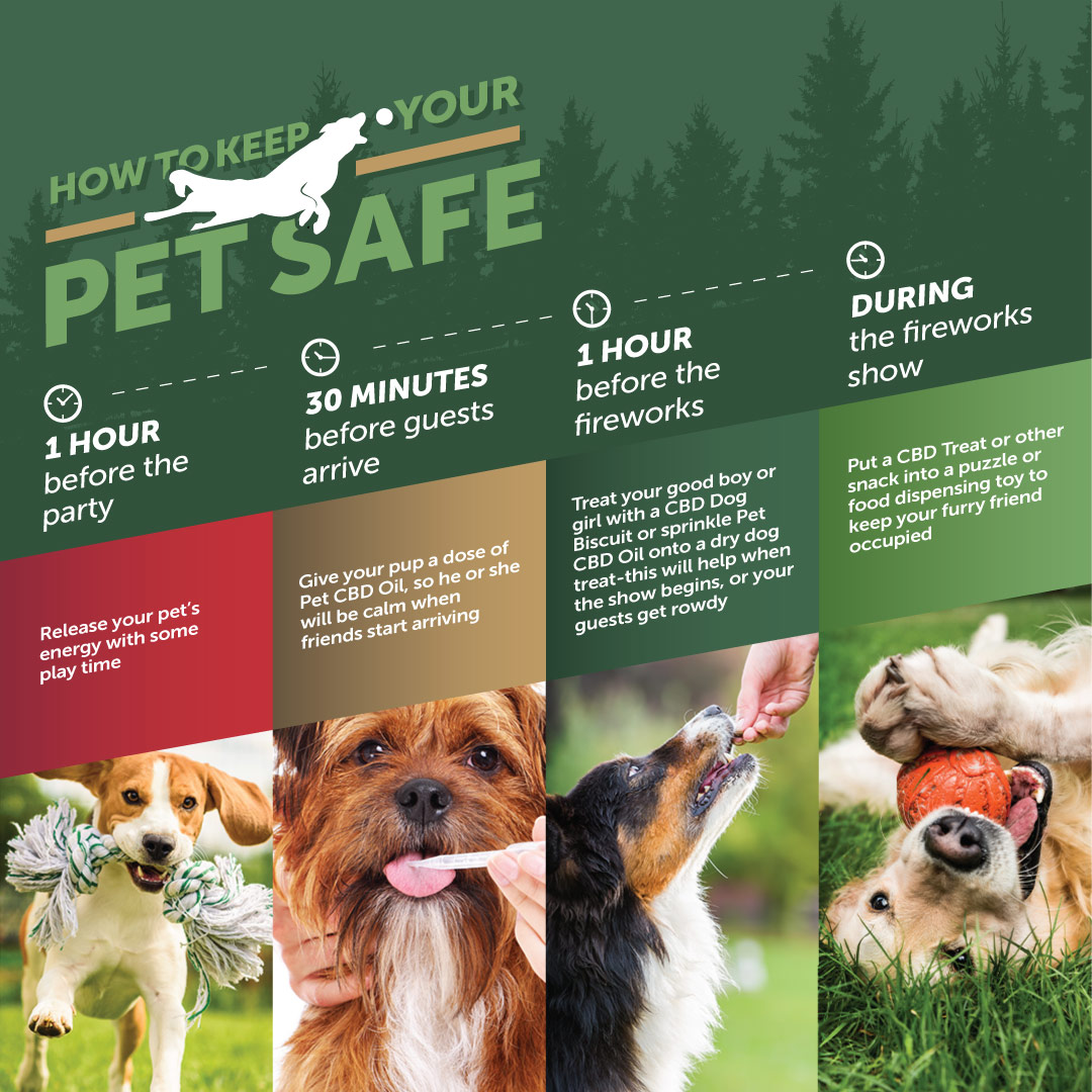 How to keep your pet safe during the holidays with CBD