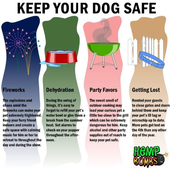 CBD Pet Tips Fourth of July