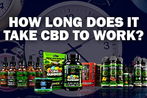 How Fast Does CBD Work