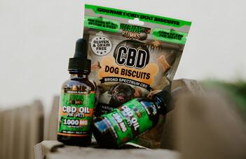 Premium CBD Products - CBD for Pets