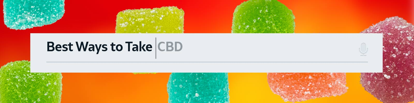 Best Ways to Take CBD Edibles, Oils, Topicals and More