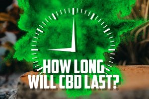 How long does CBD last? CBD Bioavailability