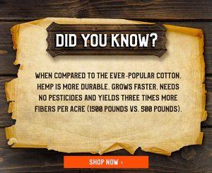 Hemp Versus Cotton Fact