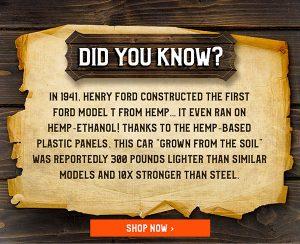 Interesting Hemp Fact
