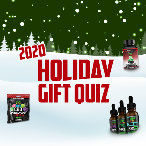 2020 Holiday Gift Quiz Graphic