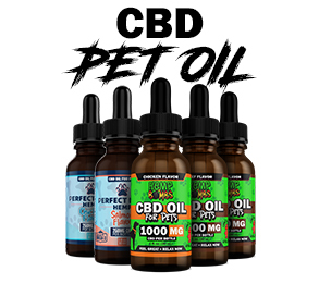 CBD Pet Oil graphic