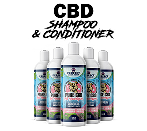 CBD Shampoo and Conditioner Graphic