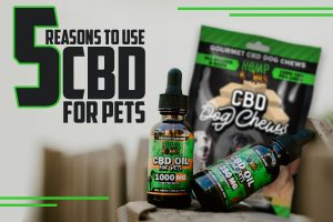 CBD for Pets preview image