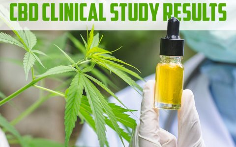 CBD Clinical Study Results